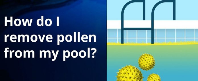 How to Get Rid of Pollen In Pool